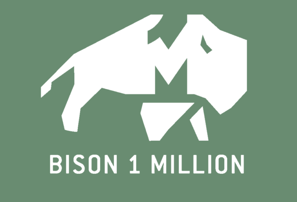 Bison One Million Logo